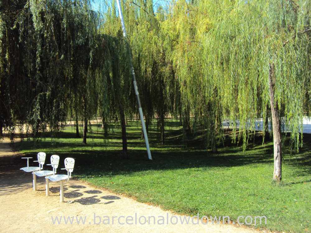Weeping willows, grass and steel chairs in El Parc del Centre de Poblenou