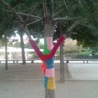 A tree wearing a wooly jumper