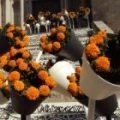 Buckets of orange flowers on the steps of a church in Girona near Barceloa Spain