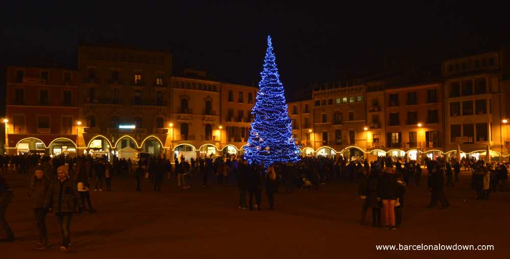 Christmas time in vic, a large christmas tree is the focal point of the city's main plaza