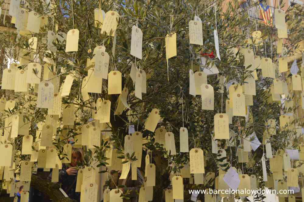 The tree of wishe wheres visitors hang tags on which they have written their wishes