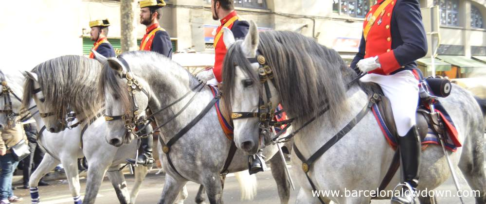 White horses in the anual tres tombs parade Barcelona