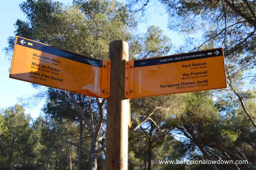 a yellow signpost and some trees in a park