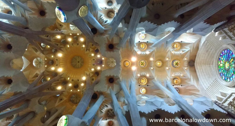 The ceiling of the Sagrada Familia and the tree like columns which support it
