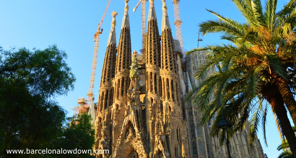 The nativity façade of Antoni Gaudi's Sagrada Familia Basilica in Barcelona bathed in early morning sunlight. This photo was taken from a park and there are trees and a palm tree in the foreground.